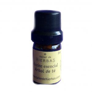 Aceite esencial Arbol de té – Taller de Hierbas