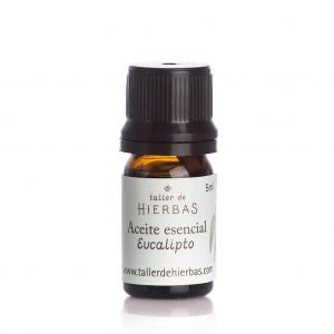Aceite esencial de eucalipto – Taller de Hierbas